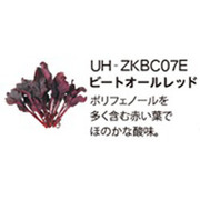 UH-ZKBC07E [Green Farm用 水耕栽培種子キット ビートオールレッド]