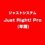 Just Right! Pro (年間) [ライセンスソフト]