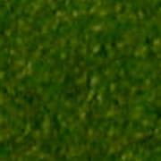 CP-3 [シーナリーパウダー 秋の緑 Nゲージ]
