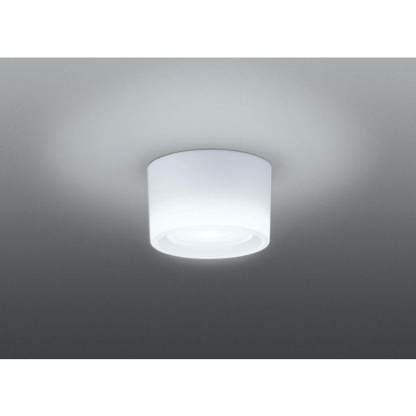 LEDG98109W-LS [LED小形照明器具 40W]