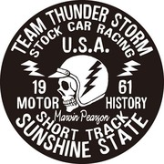 OSS-003 [防水ステッカー オイルショックデザインズ Team Thunder Storm]