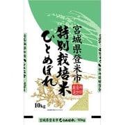 宮城県 登米市産 特別栽培米 ひとめぼれ 平成25年産 精米 10kg