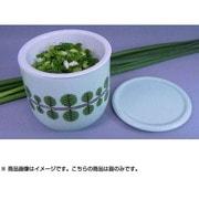 ねぎイキイキBOX (ねぎの森)グリーン