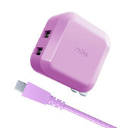 RK-ADA01V [2.4A AC Adapter For SmartPhone & Tablet PC]