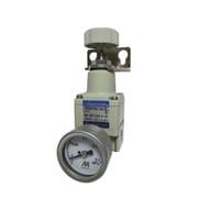 BN-3RT1100-6-2K [精密減圧弁6A2K]