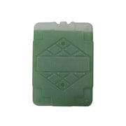 CAH-500-11 [保冷剤 容器500g -11℃ 緑 25×140×195mm]