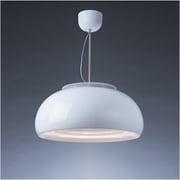 C-DRL501-PRW [cookiray(クーキレイ) 照明付き換気扇 LED グロスホワイト]