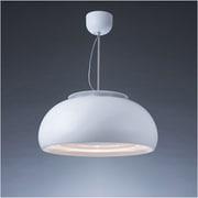 C-DRL501-TW [cookiray(クーキレイ) 照明付き換気扇 LED マットホワイト]