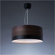 C-FUL501-WBK [cookiray(クーキレイ) 照明付き換気扇 LED ウッドブラック]