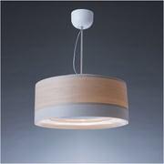 C-FUL501-WW [cookiray(クーキレイ) 照明付き換気扇 LED ウッドホワイト]