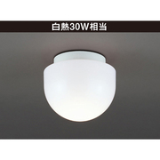 LD-2940-L [浴室灯 E26 LED電球 6.3W 315lm 電球色 Ceiling Exterior(シーリング・エクステリア)]