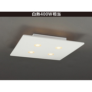 LD-2942 [LEDシーリングライト 8~10畳 電球別売 調光不可 リモコン無 簡易取付]