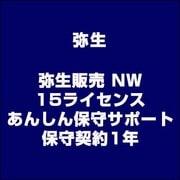 弥生販売 NW 15ライセンス あんしん保守サポート 保守契約1年 [ライセンスソフト]