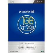 BM-FRML-1GBN [b-mobile3G・4G1GB定額パッケージ(ナノSIM)]
