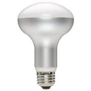 LDR10NH [LED電球 E26口金 昼白色]