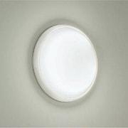 DWP-33296E [蛍光灯浴室灯 30W形 昼白色 60Hz(西日本地域対応)]