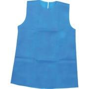 002183 [衣装ベース (ワンピース) Cサイズ 青]