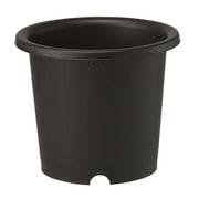 菊鉢7号 ブラック