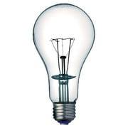 BB110V100W [白熱電球 防爆形照明器具用 E26口金 110V 100W]