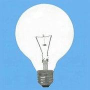 G95E26220V20WC [白熱電球 ボールランプ E26口金 220V 20W形 95mm径 クリア 220V用]