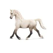 13761 アラビア馬 (メス) [HORSE CLUB]