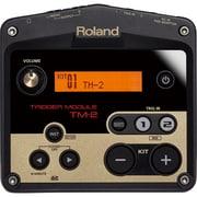 TM-2 [音源モジュール]