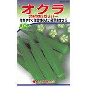 KS300シリーズ(野菜) No.220 オクラ ガリバー