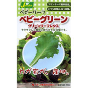 KS100シリーズ(野菜) No.705 ベビーリーフ ベビーグリーン グリーンリーフレタス