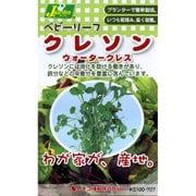 KS100シリーズ(野菜) No.707 ベビーリーフ クレソン ウォータークレス