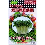 KS100シリーズ [スプラウト かいわれ大根 野菜100 751]