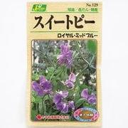 KS100シリーズ(草花) No.129 スイートピー ロイヤルミッドブルー