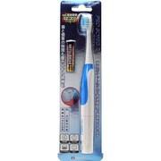 DH200 BL [PRO SONIC 2 本格音波振動ブラシ ブルー]