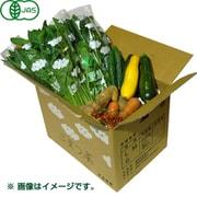 有機農法で作った野菜セット(小松菜、ルッコラなど旬の野菜) [茨城県産 有機野菜4,480円セット]