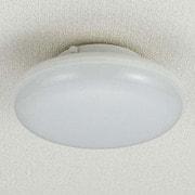 LCL-S1001(D) [LED小型シーリングライト 昼光色]
