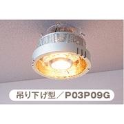 P03P09G [ヒーター一体型照明 ポカピカ 吊り下げ型]