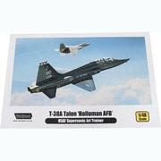 WOLWP10004 T-38A タロン 米空軍練習機 「ホロマン米空軍基地」 [1/48スケール 組立キット]