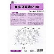 労務13-1 [職務経歴書 A4用紙5枚]
