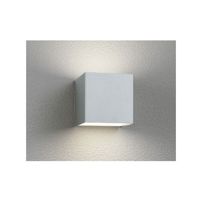 OG254381 [LEDポーチライト 6W 非調光 電球色]