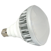 LED-139CW 散光型 [LED撮影用電球 白色(デイライトカラー用) 30W]