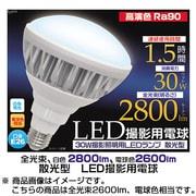 LED-139WW 散光型 [LED撮影用電球 電球色(一般用) 30W]