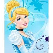 Wii U Skin Cinderella [Wii U ドレスアップシール]