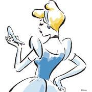 Wii U Skin Cinderella Sketch [Wii U ドレスアップシール]