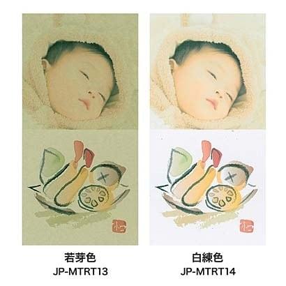 JP-MTRT13 [和紙 マルチタイプ 若芽(わかめ)色]