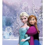 PS Vita2000 Skin Anna and Elsa [PS Vita用 ドレスアップシール]