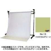 BPS-1800 [#13 トロピカルグリーン 1.75×2.7m]
