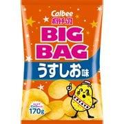 ポテトチップス うすしお味 BIGBAG 170g
