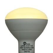 LDR3L-H-E17 A9 [LED電球 E17口金 電球色 270lm]