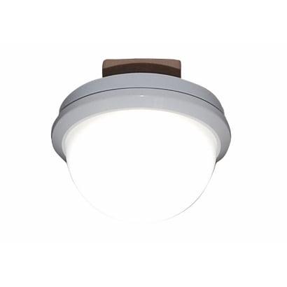 CE-1006 [LED小型シーリング 昼白色]
