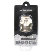 DI-SK-01 [ダイカット USBポート AC充電器 スカル・シルバー]