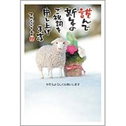 PA454 [未年 お年玉付年賀ハガキ3枚 特選パック フォトデザイン1]